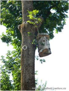 На деревьях развешаны скворечники и кормушки для птиц.